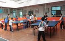 学乒乓球东莞乒乓球培训常年招生