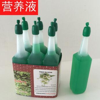供应 微小植物浓缩营养液