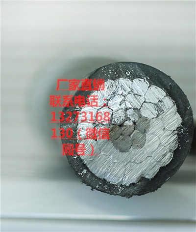 湖北仙桃电线电缆厂家钢芯架空线240-30低压户外电缆