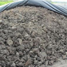 发酵鸡粪 纯鸡粪肥 有机蔬菜用 厂家爆款推荐
