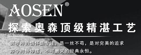 枣庄奥森乐器有限公司