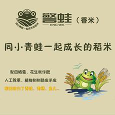 警蛙香米丝苗油粘绿色包装5KG 有机栽培不抛光农家自产无化肥诶农药大米