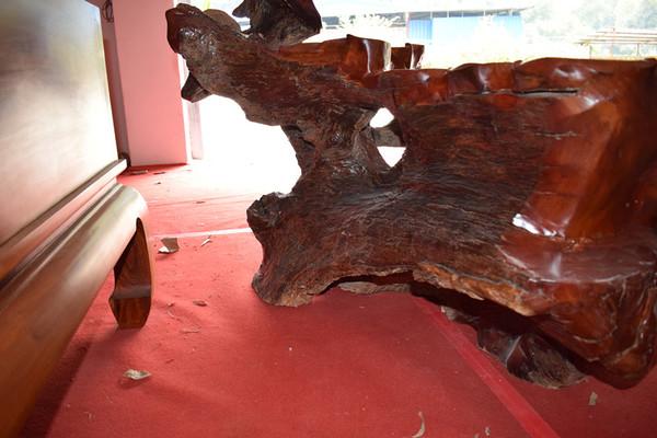 古今淘城 红木家具 缅甸花梨木 原木无拼补 树根茶台