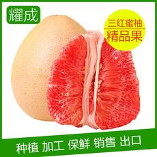 正宗平和琯溪蜜柚 三红蜜柚 产地直批 5000斤起