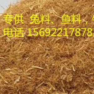 天津市富牧饲料供应新货麦芽根   适合水产兔料  性价比高