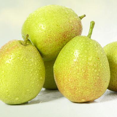 新疆一级香梨