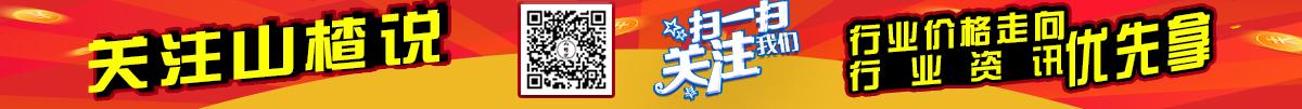 中国山楂产业网