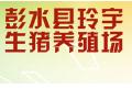 彭水县玲宇生猪养殖场