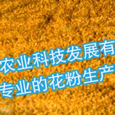 人工授粉用活性花粉-苹果花粉