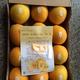 大量(预)订精品脐橙10斤装送礼之佳品