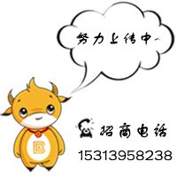 中国蜜桔产业网