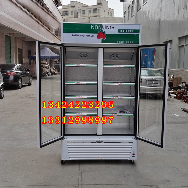 南凌冷柜 双门冷藏柜 LG-518 LG-518F 便利店饮料啤酒可乐展示柜