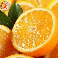 预售江西赣州正宗赣南脐橙包邮果园直发新鲜橙子(11月10日)