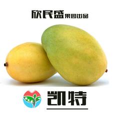 四川特产攀枝花芒果 凯特芒果 新鲜水果大芒果8斤装坏果包赔