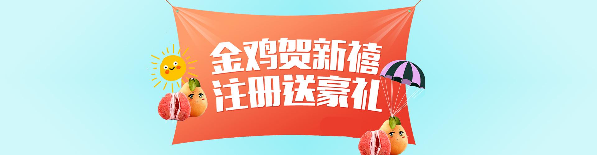 中国核桃产业网