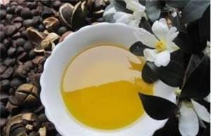 基地自产自销优质茶油  100%纯正