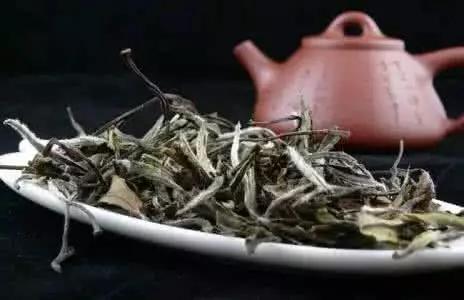 四种湖南黑茶的正确泡法喝出名茶的清、纯、浓