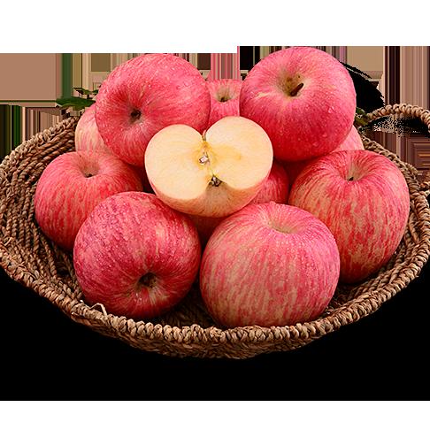 【山地苹果】陕西安塞精品85#山地苹果