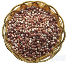江西宏洁 供应优质养生专用 芡实 睡莲科植物芡 欢迎采购
