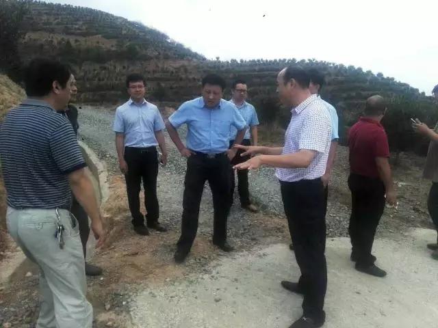 新任永泰县委书记携县、镇党政领导调研丰盛农林