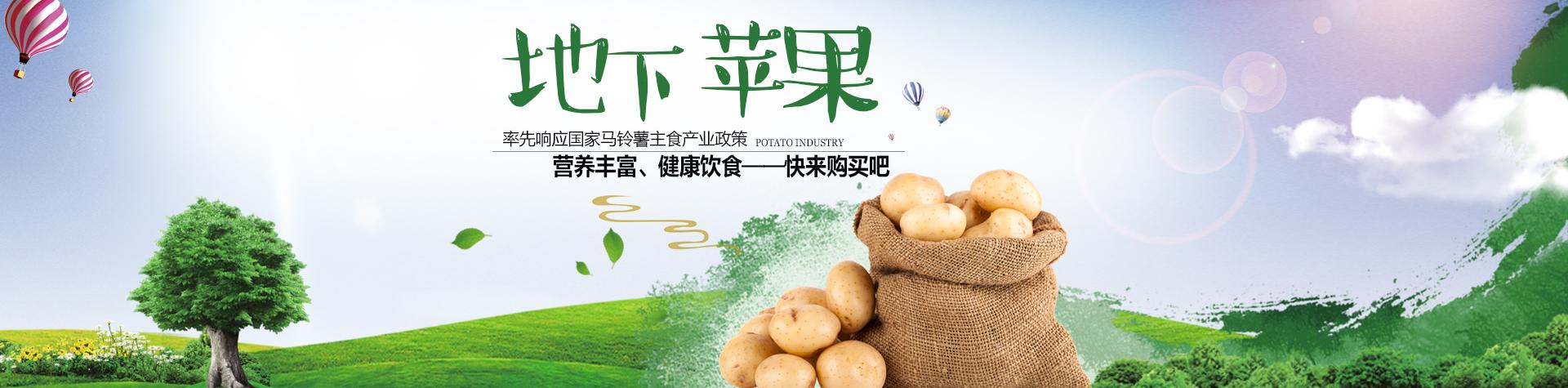 马铃薯超市