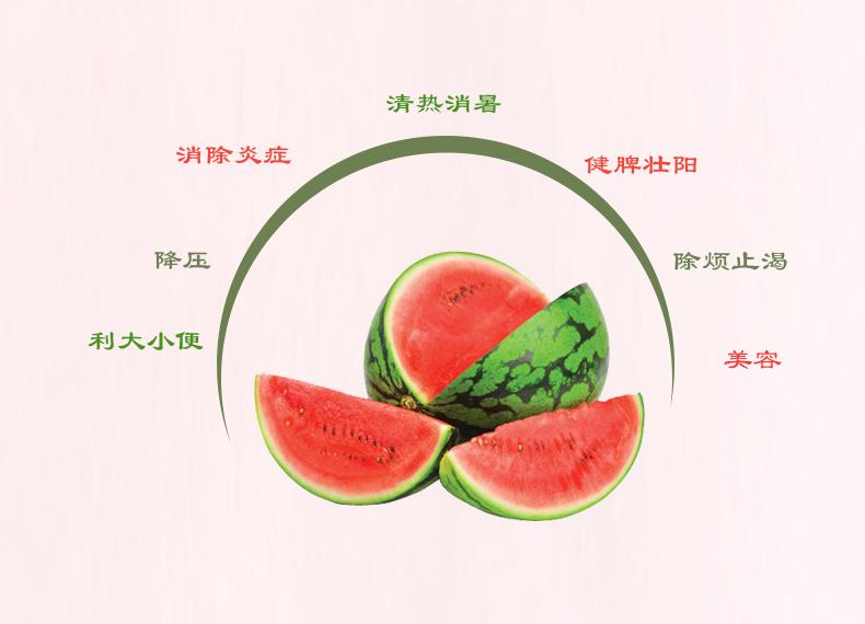 早春红玉西瓜