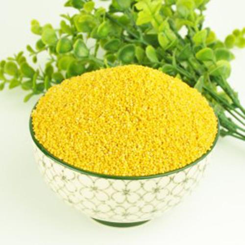 乾安黄小米 泥花散小米 农家米自产自销