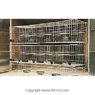鸽子笼-004图片