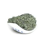 松阳绿茶 原产地新品上市
