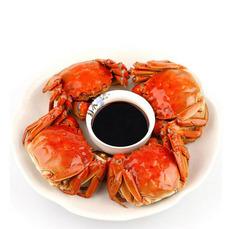 供应批发大闸蟹热销中 3.2-3.6两公2.2-2.6两母 5对10只装螃蟹
