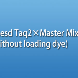 Taq2×Master Mix (without loading dye) PCR反应试剂