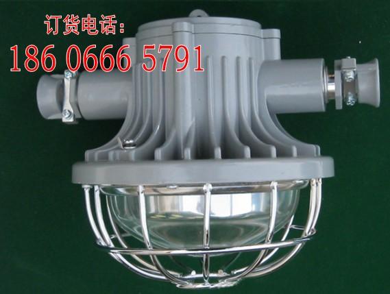 供应DGS36/127L(A)矿用隔爆型LED巷道灯