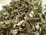 广东清远特产溪黄茶 养肝护肝养生保健茶 野生溪黄茶