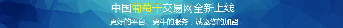 中国葡萄干交易网