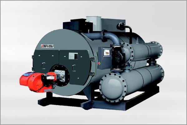 河北燃气蒸汽锅炉WNS1-20Q