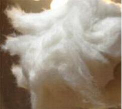 供应白竹炭棉1.5D*38mm