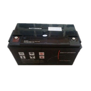 梅兰日兰蓄电池12v100ah