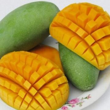 供应 新鲜水果新鲜越南进口金煌芒