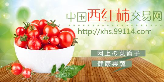 中国西红柿交易网免费帮你发采购啦!
