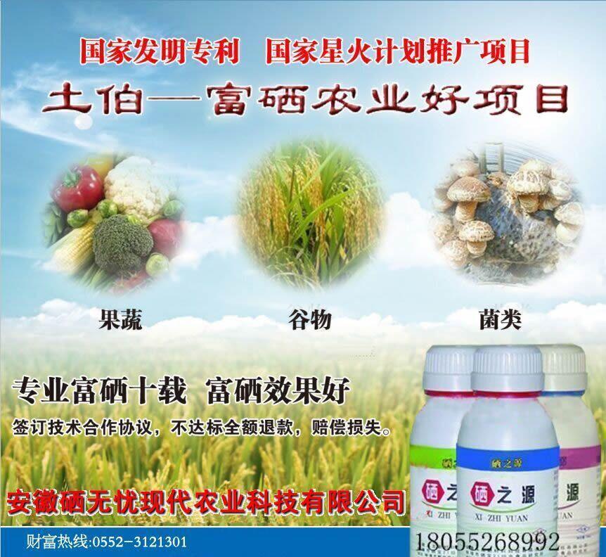 富硒水稻种植技术_大米富硒技术厂家