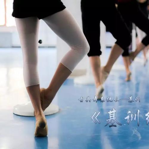 古典舞-基训课-系统化学习柔韧力量技术技巧动作