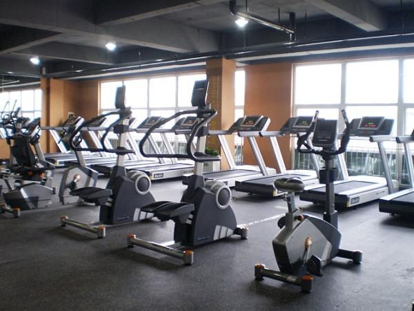黑龙江省健身休闲哈尔滨健身休闲健身器材跑步机椭圆机健身车健身车台阶器23