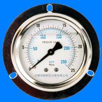 轴向带边压力表Y-50 Y60 Y100 Y150Ⅳ