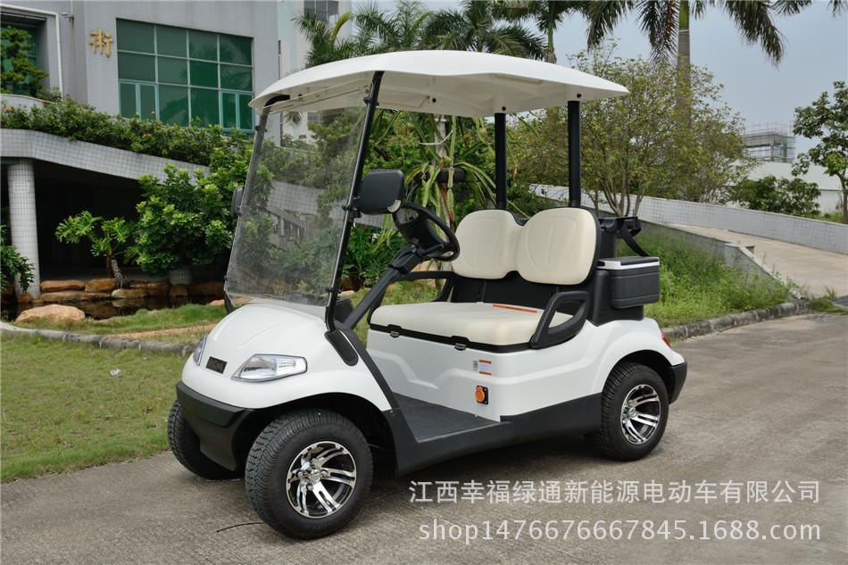 厂家直销幸福绿通2座电动观光车,园区巡逻车,四轮电动车