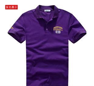 夏装新款恤短袖休闲时尚修身正品英伦翻领纯棉绣花包邮POAA-2