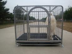 厂家批发大方管笼多种型号可选家用寄养笼具泰迪萨摩金毛大型犬笼