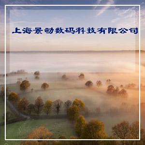 上海故事正品批发 100%羊毛印花围巾 披肩 时尚短穗围巾