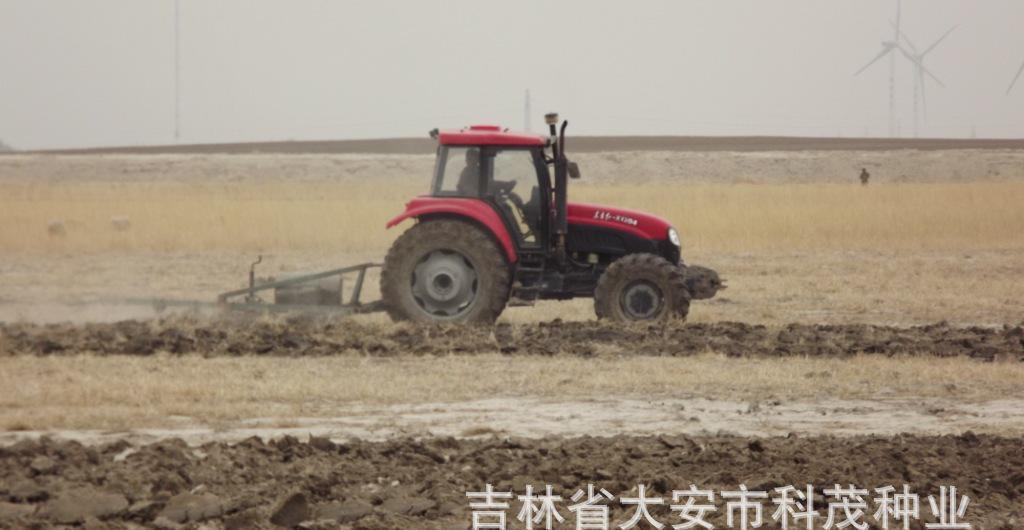 6万亩稻田地长期出租