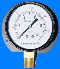 径向带边压力表Y-50 Y60 Y100 Y150Ⅵ