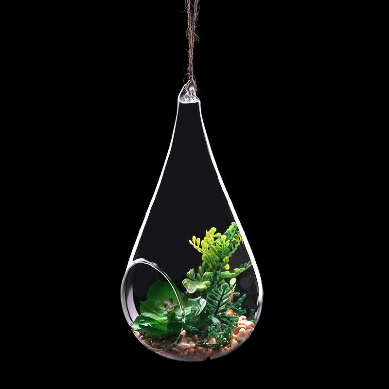 浦江仿真绿植 尖脑袋 furnishing artificial 玻璃绿植